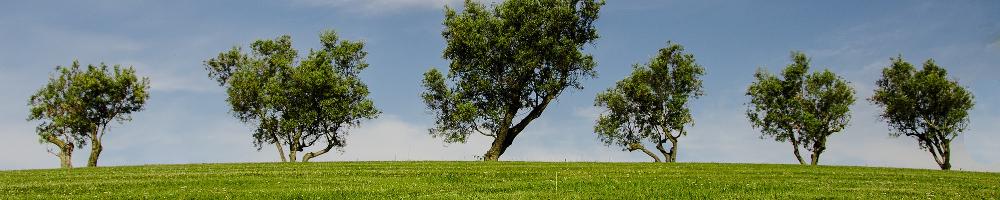 Circolo Legambiente il Molgora – Pessano con Bornago (MI)